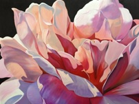 Painting from my Moroccan rose series